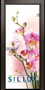Стъклена интериорна врата Print G 13 2 K