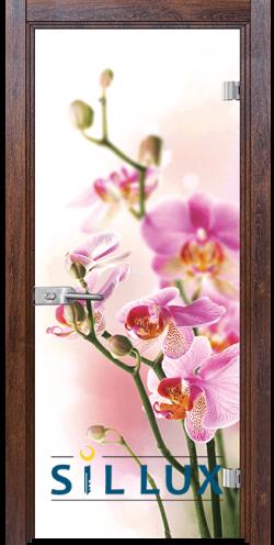 Стъклена интериорна врата Print G 13 2 Q