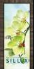 Стъклена интериорна врата Print G 13 3 Green E