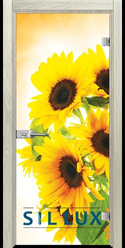 Стъклена интериорна врата Print G 13 4 I