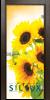 Стъклена интериорна врата Print G 13 4 K