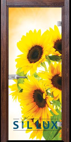 Стъклена интериорна врата Print G 13 4 Q