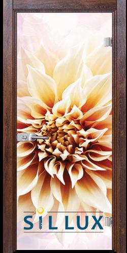 Стъклена интериорна врата Print G 13 5 Q