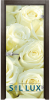 Стъклена интериорна врата Print G 13 6 K