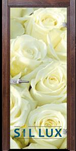 Стъклена интериорна врата Print G 13 6 Q