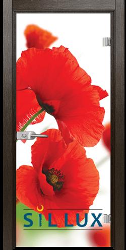 Стъклена интериорна врата Print G 13 8 K